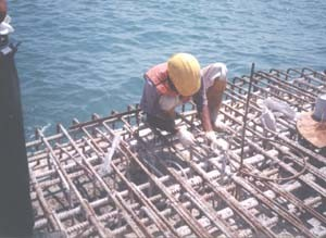 UF Grout (Epoxy Resin) is used to seal cracks within the piers by Injecto Grouting Method